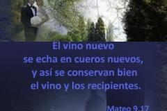 mateo-09-17