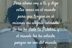 no_son_del_mundo