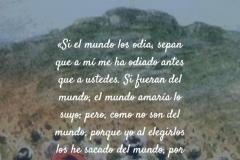 yo_los_elegi