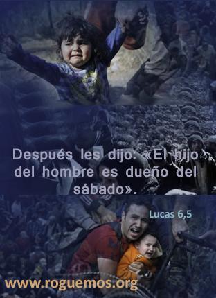 lucas-6-5