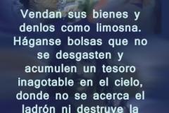 lucas-12-33