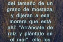 lucas-17-06