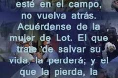 lucas-17-31