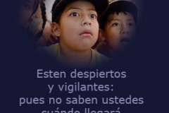 esten_vigilantes