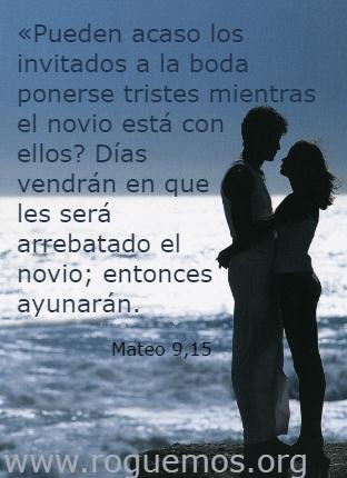 mateo-09-15