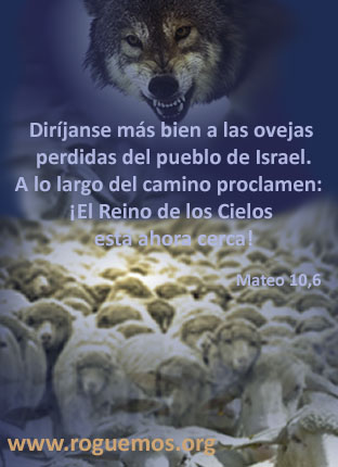 mateo-10-06