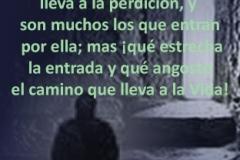 mateo-07-06