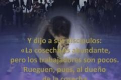 mateo-09-37