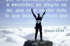 mateo-13-44