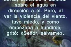 mateo-14-29