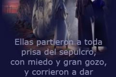 mateo-28-08